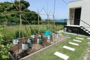 南房総館山-芝敷きの庭別荘-家庭菜園-ガーデニング