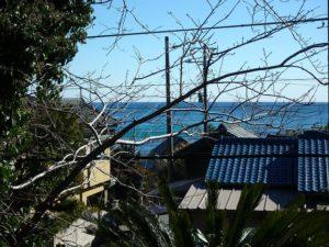 鴨川市の中古住宅 海が見える売家 南総ユニオン株式会社 木を手入れすれば海がもっと