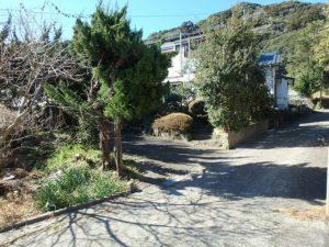 鴨川市の中古住宅 海が見える売家 南総ユニオン株式会社 木の茂みが物件です