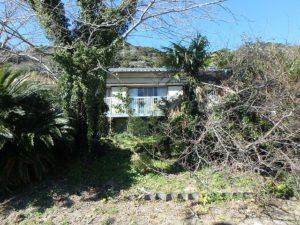 鴨川市の中古住宅 海が見える売家 南総ユニオン株式会社 建物周りの木を何とかしたい