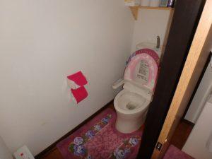 千葉県南房総市井野の古民家 南房総の田舎暮らし物件 南総ユニオン株式会社 トイレは水洗です