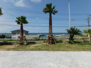 千葉県館山市西川名の中古住宅 館山市海が見える物件 南総ユニオン株式会社 ダイビングで有名な地です