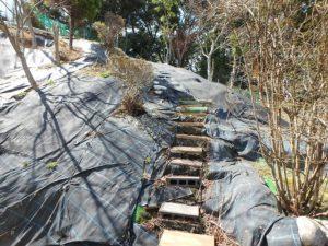 千葉県勝浦市上植野の中古住宅 勝浦市の売別荘 南総ユニオン株式会社 自作の階段を上がっていきます