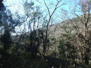 千葉県君津市清和市場の不動産 鹿野山の山林 南総ユニオン株式会社 尾根からの景色は気持ち良い