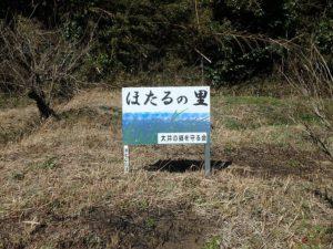千葉県君津市大井の不動産 君津の山林 南総ユニオン株式会社 近隣はホタルが生息します