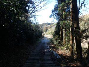 千葉県君津市大井の不動産 君津の山林 南総ユニオン株式会社 こんな山道です