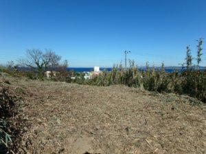 千葉県館山市加賀名の売地 館山の海が見える物件 館山ポピーランド内 南総ユニオン株式会社 上は緩やかな地勢です
