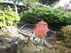 千葉県南房総市千倉町北朝夷の中古住宅 南房総の広い庭付戸建 果樹のある物件 南総ユニオン株式会社 東側には池もあります