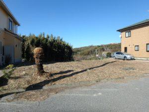 千葉県館山市佐野の土地 別荘用地 南房総の土地 敷地面積124坪あります