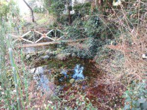 千葉県南房総市千倉町川戸の土地、上物付き 山の中にポツンと一軒家 池まで造ってある