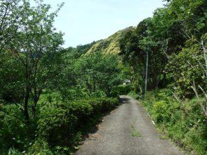 千葉県南房総市和田町上三原の不動産 畑付き中古物件 南房総田舎暮らし 進入道路を下りてみます