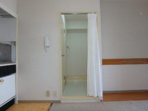 千葉県鴨川市東江見のリゾートマンション、鴨川の不動産、南房総の海が見える物件 隣接して洗面脱衣室