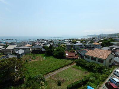 海遠望リゾートマンション 鴨川市東江見 1DK 230万円 サムネイル画像2