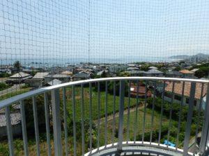 千葉県鴨川市東江見のリゾートマンション、鴨川の不動産、南房総の海が見える物件 鳥対策のネットがある