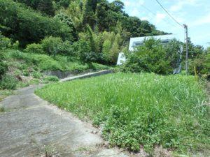 千葉県安房郡鋸南町下佐久間の別荘 南房総の不動産 果樹生活 田舎暮らし 建物左側は果樹山です