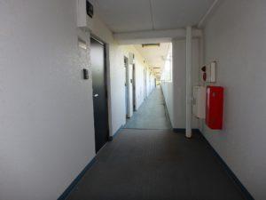 千葉県鴨川市東江見のリゾートマンション、鴨川の不動産、南房総の海が見える物件 対象物件は5階です