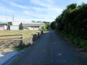 千葉県館山市佐野の土地 別荘向き不動産 道路側は保安林です