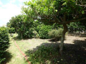 千葉県館山市の不動産 中古住宅 海が見える物件 田舎暮らし 果樹も数本あります