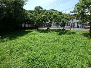 千葉県南房総市上滝田の不動産 房総の土地 三芳村の物件 もちろん家を建てられます