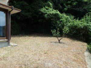 千葉県館山市館山の不動産 中古住宅 館山の別荘 お庭もたっぷり