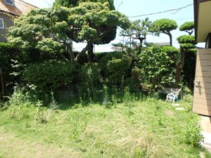 千葉県館山市長須賀の中古住宅 館山の不動産 手入れをすれば立派な庭に