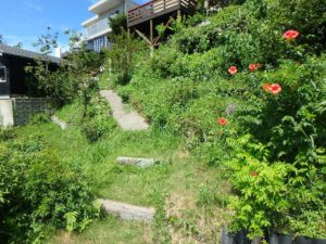 千葉県館山市加賀名ポピーランドの別荘 海一望の物件 海が見える不動産 途中まで一応歩き道はある