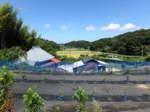 千葉県館山市水岡の古民家 館山田舎暮らし物件 館山の不動産 素晴らしい環境です