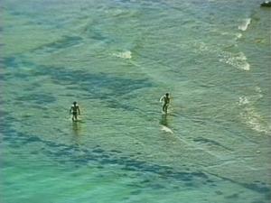 千葉県安房郡鋸南町下佐久間の不動産 アルカディアの物件 海一望の別荘 潮が引けばこんな水遊びも
