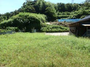 千葉県館山市水岡の古民家 館山田舎暮らし物件 館山の不動産 自然の恵みに囲まれてる