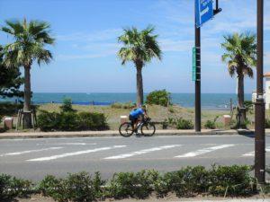 千葉県館山市北条海岸 海が見える土地 海沿い、海前の物件・不動産 リゾート満喫です
