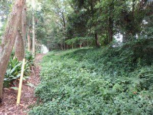 千葉県南房総市本織の不動産 人里離れた環境 仙人暮らし この通路は持分道路