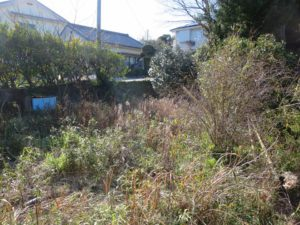千葉県館山市の不動産,古家付き土地,移住用地,80坪の敷地です