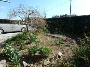 千葉県南房総市下堀の不動産,旧三芳村中古戸建,田舎暮らし,プチ菜園やガーデニングも