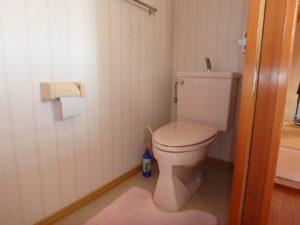 千葉県南房総市下堀の不動産,旧三芳村中古戸建,田舎暮らし,2階のトイレです