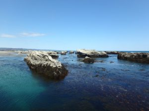 千葉県南房総市千倉町の不動産,海が見える土地,別荘用地,広い土地,磯場も点在する海