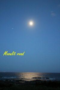 千葉県南房総市千倉町白間津の不動産,海一望の別荘,海が前,海っぺり,築浅,海と月光も神秘的です