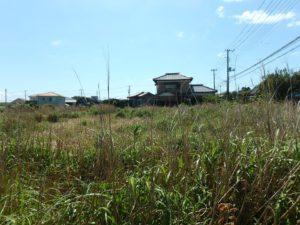 千葉県南房総市千倉町の不動産,海が見える土地,別荘用地,広い土地,道路間口は約35m