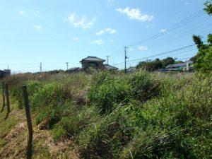 千葉県南房総市千倉町の不動産,海が見える土地,別荘用地,広い土地,開放感ある環境です