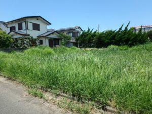 千葉県館山市那古の不動産、土地情報、海近く、分譲地、別荘や移住用地、お好きなハウスメーカーで
