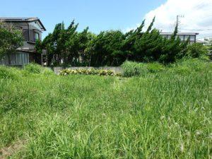 千葉県館山市那古の不動産、土地情報、海近く、分譲地、別荘や移住用地、敷地北側に移動します