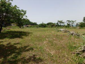 千葉県館山市沼の不動産、中古戸建、別荘、広い敷地、キャンプ用地、海一望、オーシャンビュー、レア度かなり高めです