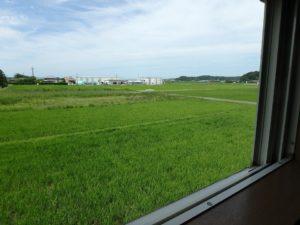 千葉県館山市薗の不動産、中古戸建、売家、九重地区、田舎暮らし、移住、西側は田園風景です