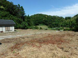 千葉県館山市正木の不動産、山林、小屋付き、ドッグラン、動物飼育、個人キャンプ場、中々無いお宝物件かも