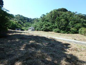 千葉県館山市正木の不動産、山林、小屋付き、ドッグラン、動物飼育、個人キャンプ場、多目的用途に利用可能
