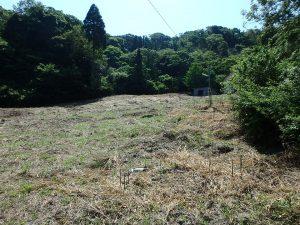千葉県館山市正木の不動産、山林、小屋付き、ドッグラン、動物飼育、個人キャンプ場、平坦だけで1000坪以上
