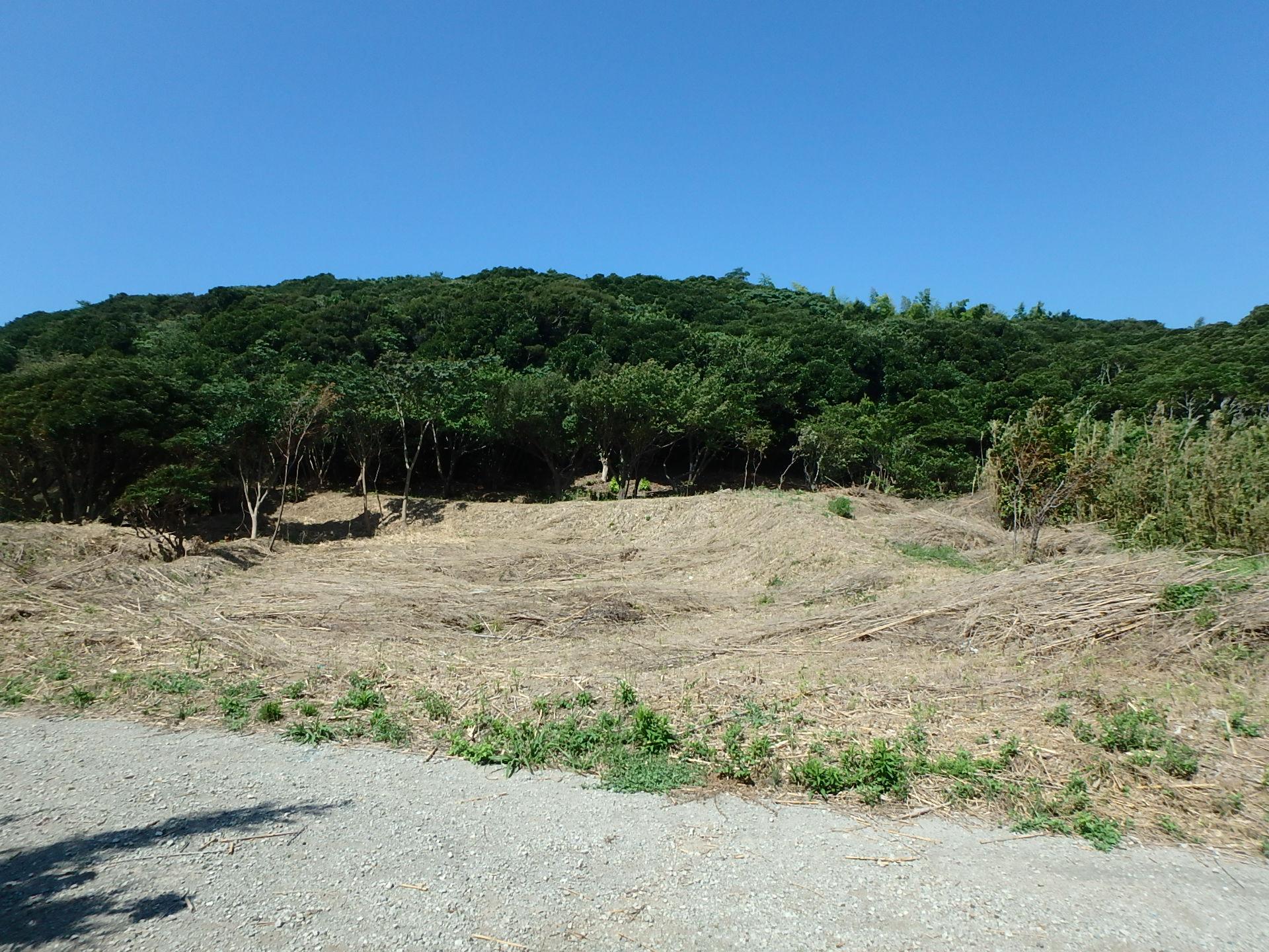 千葉県富津市の山林売買、不動産、土地、ご商談中