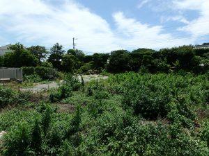千葉県南房総市富浦町多田良の不動産、土地、海水浴場近く、海が見える、2階からは海も見えそう
