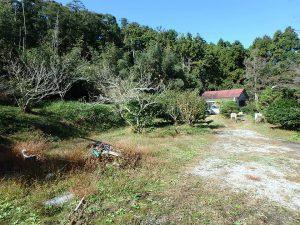 千葉県鴨川市川代の不動産、山林、別荘、キャンプ場用地、沢沿いの実測1508坪