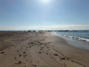 千葉県南房総市白浜町根本の不動産、海が見える土地、別荘用地、素晴らしい自然環境です