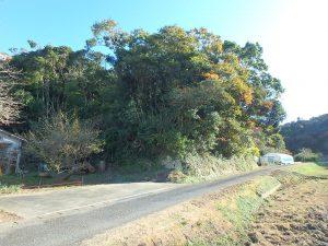 千葉県南房総市中の不動産、山林、里山田園の静かな自然環境